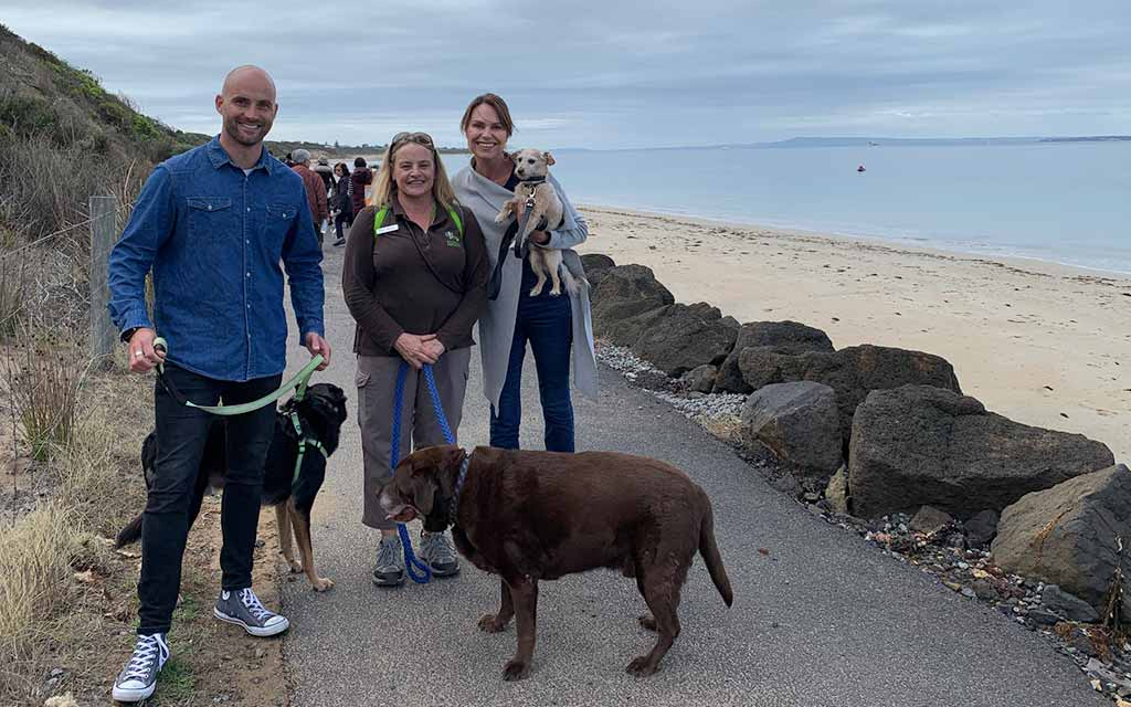Dog friendly activities in Geelong and surrounds
