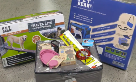 Pet-friendly Travel Prize Pack Competition – CLOSESD
